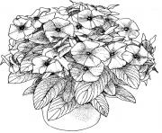 Printable flowers pictures adults coloring pages