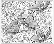 Printable printable butterfly for adults coloring pages