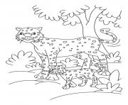 cheetah coloring sheets for kids98df