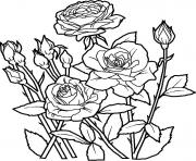 Print cool flower s for kids83fb coloring pages