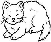 Printable coloring pages for kids cat fat2304 coloring pages