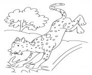 Print cheetah s for kids795c coloring pages