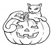 Print pumpkin halloween black cat s for kidsc3f2 coloring pages