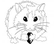 hamster s for kidsd82e coloring pages