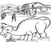Print dinosaur 368 coloring pages