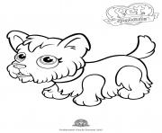 Print pet parade cute dog yorkshire coloring pages