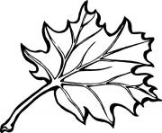 Printable thanksgiving s leaves08df coloring pages