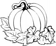 Printable pumpkin easy thanksgiving s printables7e6b coloring pages