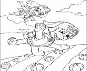 Printable paw patrol 7 coloring pages