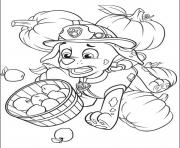 paw patrol 11 coloring pages