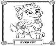 Printable Paw Patrol Everest Coloring Pages