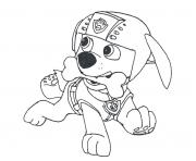 Printable paw patrol zuma with a bone coloring pages