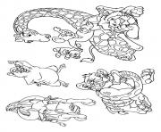wild kratts The Wild Animals coloring pages