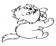Printable The toulouse kitten coloring pages