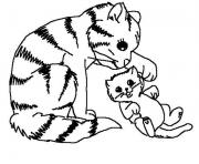 mommy cat plays with her kid 6309 coloring pages