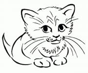 Shy Cat kittenf6cb coloring pages