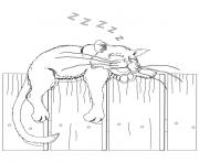 cat on a fence 9809 coloring pages