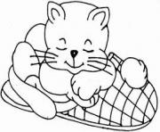 cat on slippery b253 coloring pages