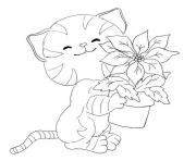 cat with small plant animal s6bc6 coloring pages