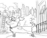 max dog walk in the city secret life of pets coloring pages