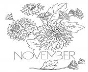 Printable November Chrysanthemum Flower coloring pages