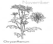 Printable Chrysanthemum November coloring pages