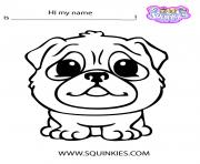 Printable Cute Squinkies dog coloring pages