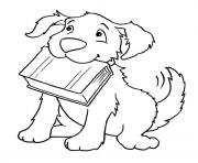 dog biting a book 626d