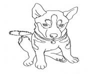 angry looking dog f22a coloring pages