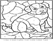 color by numbers adult worksheets dog