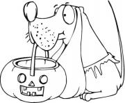 dog holds pumpkin basket halloween