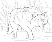 crouching gray wolf coloring pages