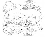 wolf mother and wolf cub