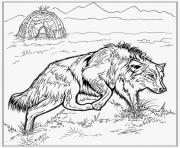 realistic wolf colouring print realistic wolf coloring pages