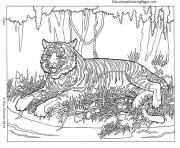 Printable Cool Animal Hard Adult coloring pages