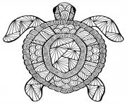 advanced animal incredible turtle colouring print advanced animal incredible turtle coloring pages