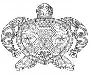 advanced adult zentangle zen turtle coloring pages