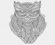 animals advanced owl colouring print animals advanced owl coloring pages