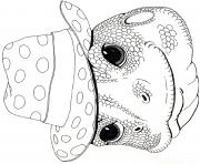 3 little dassies mask agama man by jan brett coloring pages
