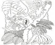 umbrella mural coloring tree trunk 2 by jan brett coloring pages