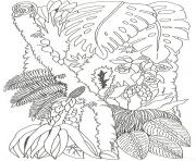umbrella mural coloring tree trunk 2 reverse by jan brett coloring pages