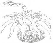 umbrella mural coloring close up bromeliad by jan brett coloring pages
