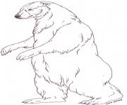 mural tsb polar mother bear by jan brett coloring pages