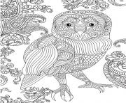 Printable owl beautiful adult difficile coloring pages