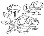 Printable five roses a4 coloring pages