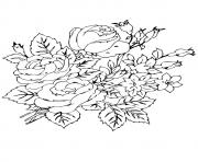 Printable group of rosas a4 coloring pages