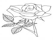 Printable nature flower a4 coloring pages
