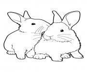 Printable easter bunnys loves real coloring pages