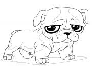 baby puppy bulldog coloring pages