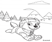 PAW Patrol Everest in Mountains coloring pages